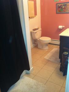 Can I Paint My Bathroom Tile